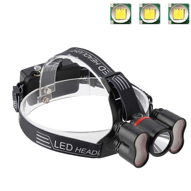 その結果デイジー免除ヘッドライト懐中電灯、2000LMヘッドライト18650 LED USB充電式防水トラベルヘッドトーチキャンプランプランニングハイキング釣りに適して(#1)
