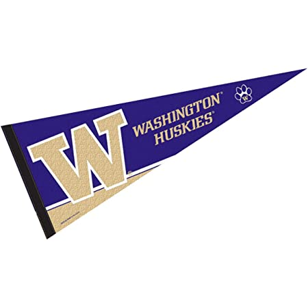WinCraft Seattle Storm Pennant Banner Flag