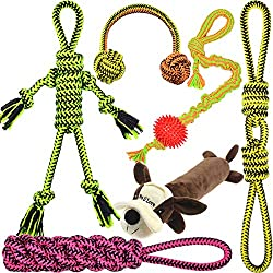 Assorted Dog Toys, 6-Pcs