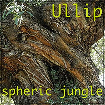 Spheric Jungle