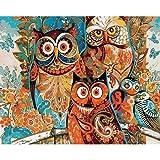 CUFUN Art Dipingi con i Numeri Kit Fai-da-Te Pittura a Olio su Tela Dipinto a Mano Regali per Bambini Adulti Decorazione della Parete Senza Cornice (Gufo Astratto)
