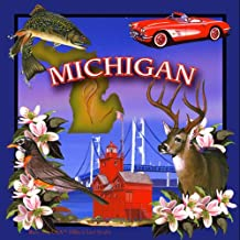 CoasterStone SQ039 Absorbent Coasters, 4-1/4-Inch,Michigan, Set of 4
