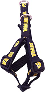 NCAA Collegiate Dog Harness
