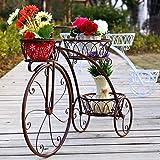 Hwcpadkj Bastidores para Plantas,Soporte de Bicicleta Metal Auxiliar con 3 Soportes para Exhibir,Soporte para macetero de Bicicleta de pie,Bronce