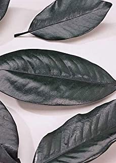 Afloral Pack of 200 - Preserved Magnolia Leaves