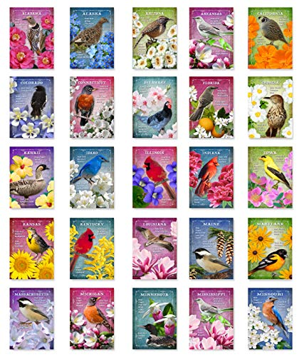 US STATE BIRDS AND FLOWERS Set of 50 postcards. United States bird and flower symbols post cards variety pack. Made in USA.
