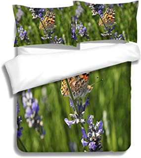 MTSJTliangwan Family Bed Painted Lady Butterfly UK 3 Piece Bedding Set with Pillow Shams, Queen/Full, Dark Orange White Teal Coral