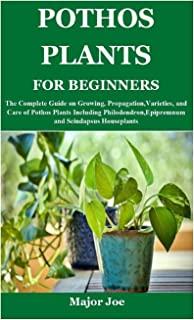 Pothos Plants for Beginners: The Complete Guide on Growing, Propagation, Varieties, and Care of Pothos Plants Including Ph...