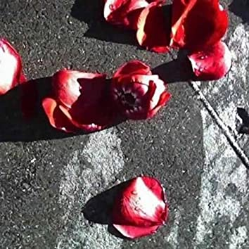 Roses Shade