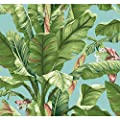 York Wallcoverings AT7070 Tropics Banana Leaf Wallpaper, Aqua, Light Yellow/Green To Dark Green, Coral