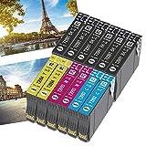 OGOUGUAN 12 cartuchos de tinta de repuesto para Epson 29XL compatibles con Epson Expression Home XP-235 XP-245 XP-247 XP-255 XP-332 XP-335 XP-345 XP-352 XP-355 XP-432 XP-442 XP-445 XP-452.