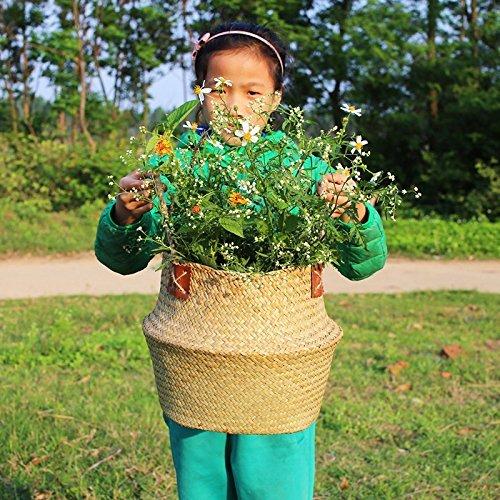 Natürliches Seegras gewebtes Bauchkorb, Goodchanceuk 3/Set Blumentopf Korb mit Griff Garten Wäschekorb Container Home - 2
