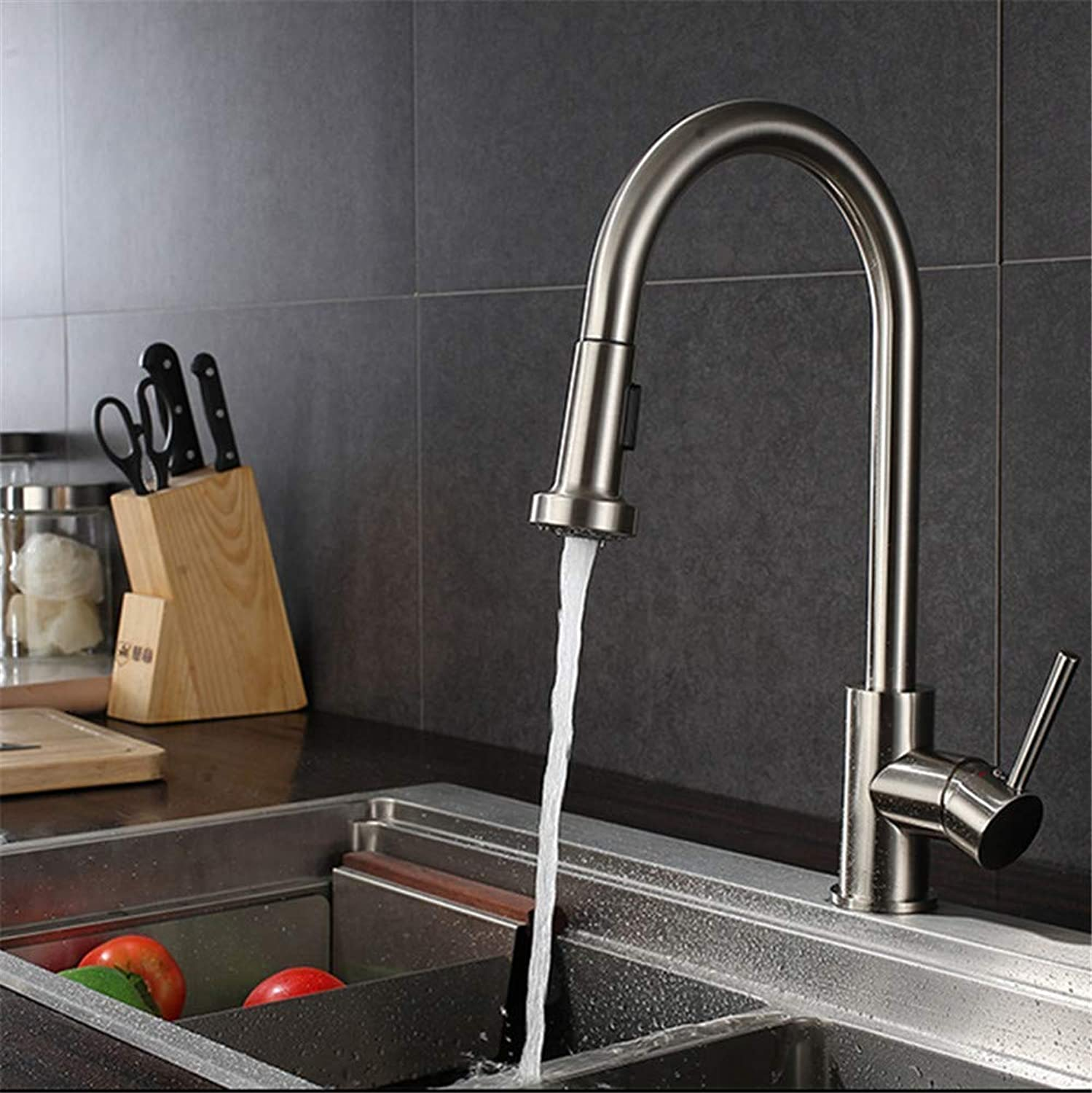 Oudan 304 Stainless Steel Pull-Out Kitchen Faucet Sink Faucet Lead Cold Sprinkling Head Flower VegetablesS65-UE6589321529 (color   -, Size   -)