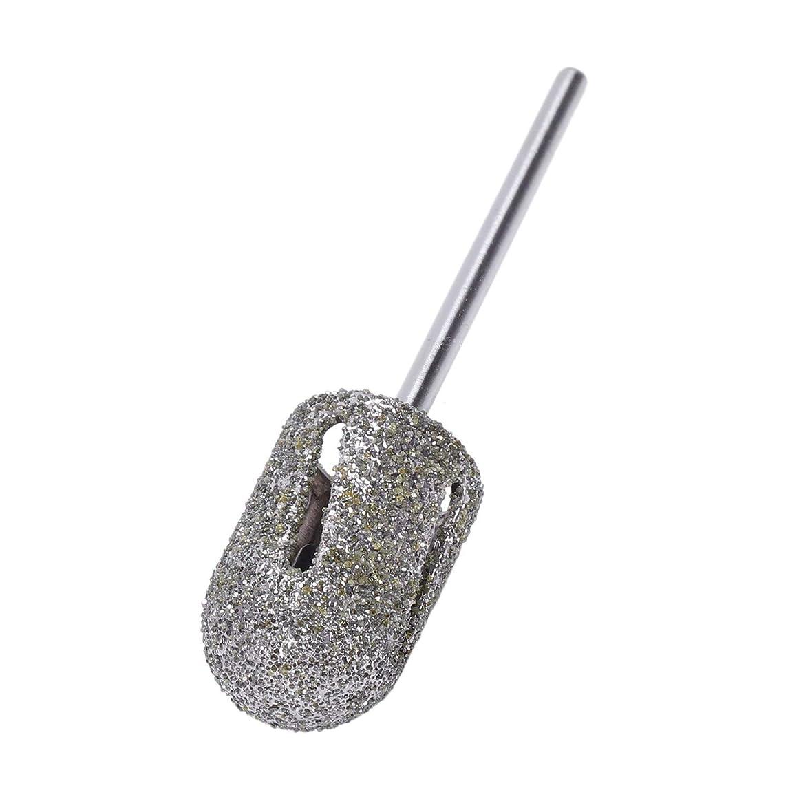 測定可能スタウト手綱TOOGOO ダイヤモンドドリルビットロータリー フットキューティクルクリーン マニキュアペディキュアツール ドリルアクセサリー ネイルミルズ-1