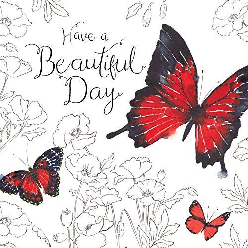 twizler Happy Birthday Karte für Sie mit Silber folieren, Einzigartige Wasserfarben-Effekt und Schmetterling–Have A Beautiful Day–Geburtstagskarte