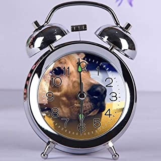 GIRLSIGHT Cute Color Alarm Clock, Round Metal Desk Clock with Night Light Bedroom Decorations 025.Adult Fawn American Pit Bull Terrier(Silver)