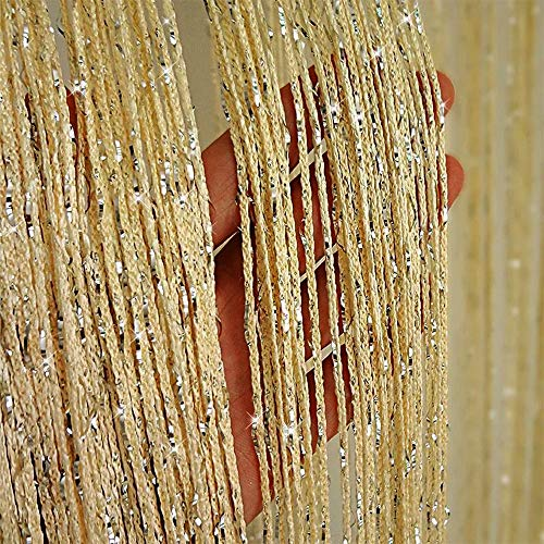 Duosuny Hanging Door String Curtain Home Decor Sequin Curtain Closet Bedroom Blind Living Room Divider,Window Wall Panel Fringe Backdrops Sheer no Beads Beaded Decorative Crystal(Champagne 2pcs)