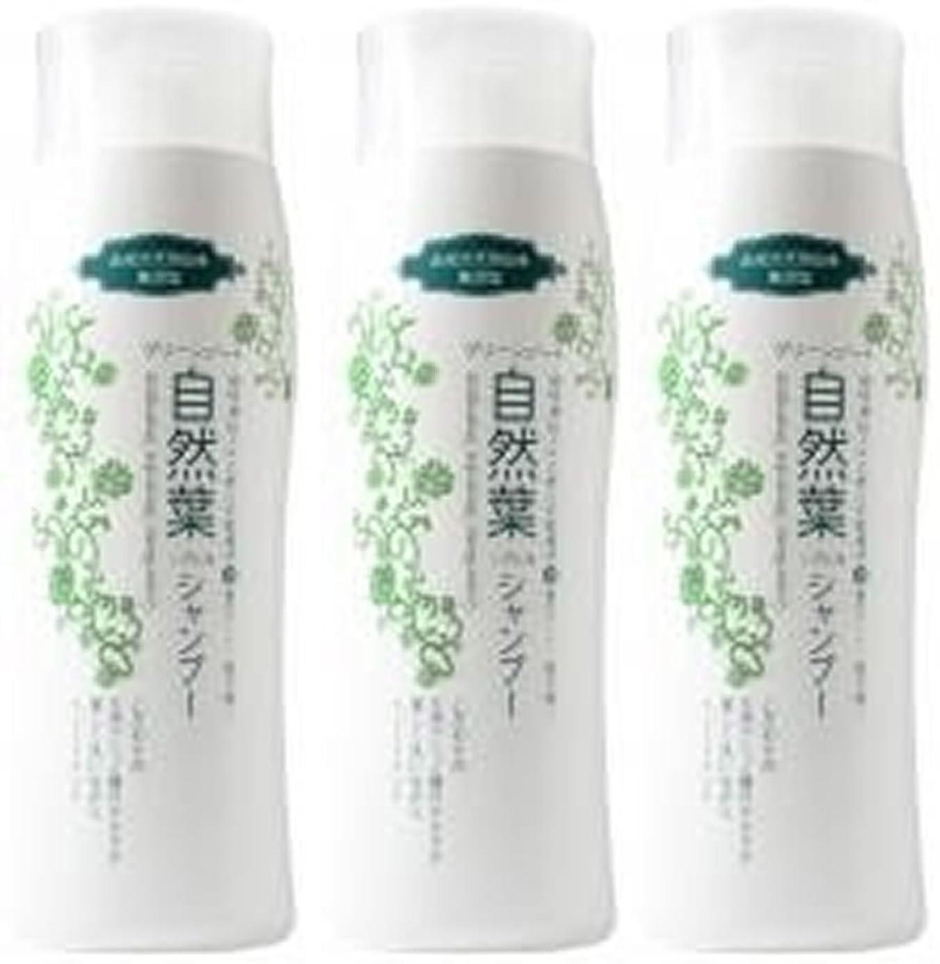 息子茎体系的にグリーンノート 18種天然アミノ酸 自然葉シャンプー 300ml   3本セット