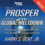 How to Prosper in the Global Meltdown: Strategies to Crash-Proof Your Life, Business, and Investments