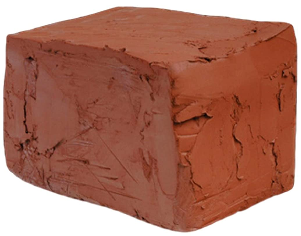 Self Hardening Modeling Clay | Dries Over Night | Toxic Free | Non-Fire Self Hardening Air Dry Clay (10lb, Red)