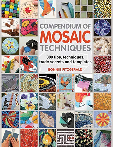Compendium of Mosaic Techniques: Over 300 Tips, Techniques and Trade Secrets by Bonnie Fitzgerald (2012-08-02)