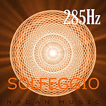 285Hz : Heals & Acceleration of Conscious Evolution (Solfeggio Frequencies)