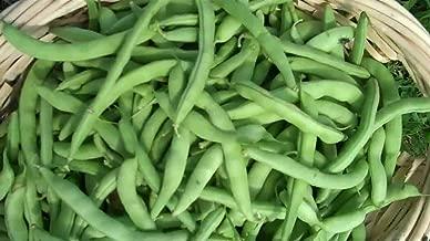 Bean, Strike Bush Green, 200 Heirloom1