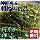 沖縄の海で育った 品質と鮮度にこだわったプチプチ海ぶどう 200g【専用タレ付き】