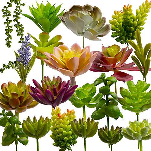 20 Pezzi Succulente Piante Artificiali, Mini Piante Grasse Artificiali Set Piante Finte per Home Parete Interna Giardino Albergo Scrivania Decorazioni