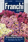 Franchi Samen Alpen-Aster