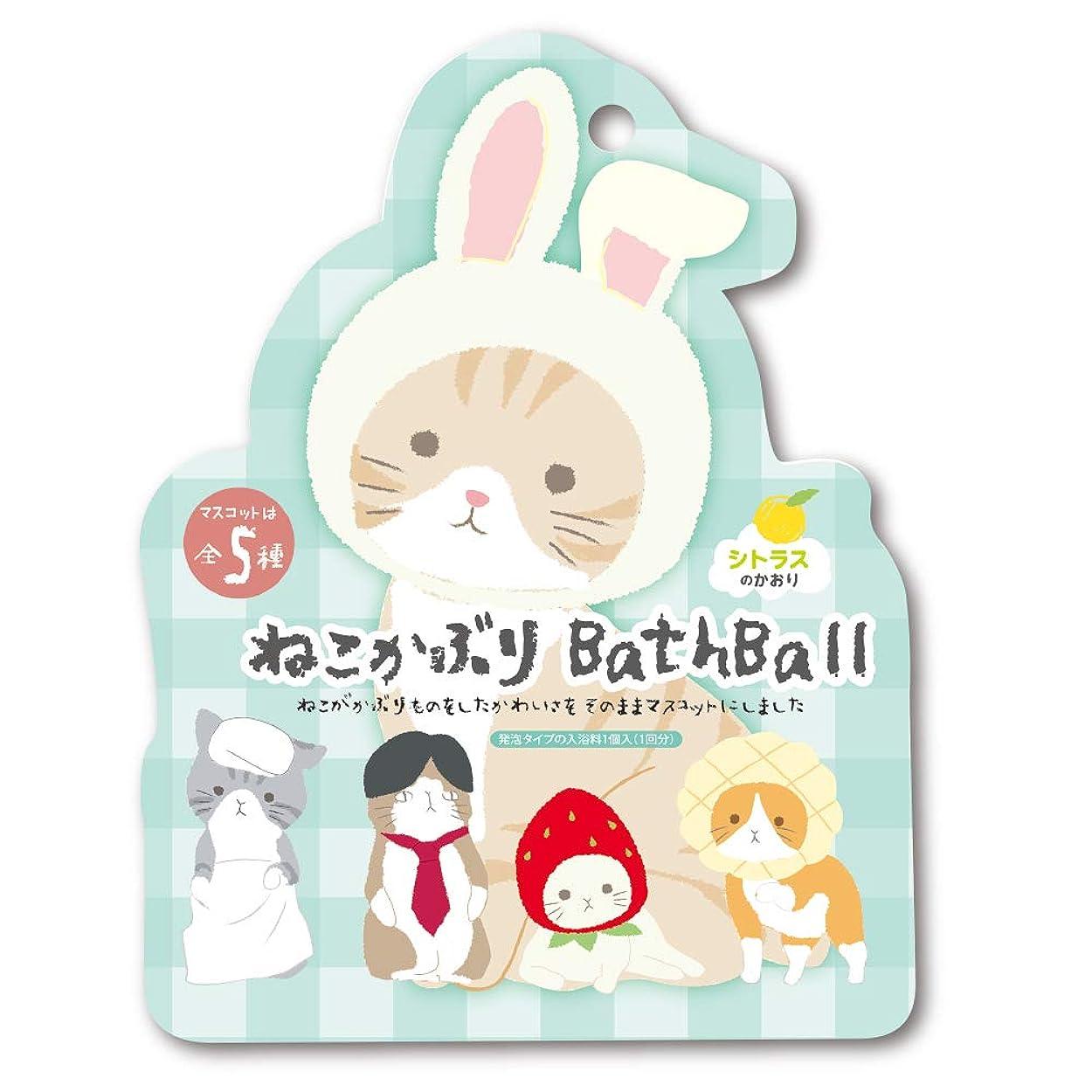 膨張する回転するパスタねこかぶり 入浴剤 バスボール おまけ付き シトラスの香り 50g OB-NEB-3-1