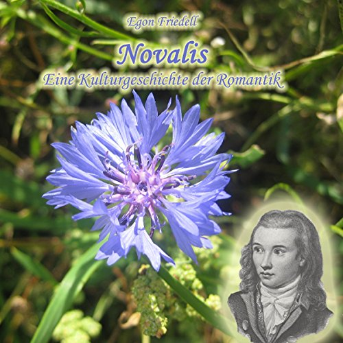 Novalis audiobook cover art