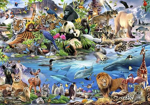 ForWall Fototapete Wanddekoration - Wandtapete Lustige Tier-Selfies Zootiere P8 (368cm. x 254cm.) AMF12843P8 Wandtapete Design Tapete Wohnzimmer Schlafzimmer