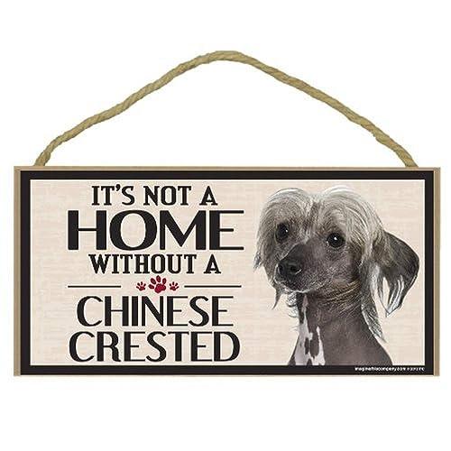 Dog on Board Club Art Print Sign Gift Car Window Sticker Patterdale Terrier