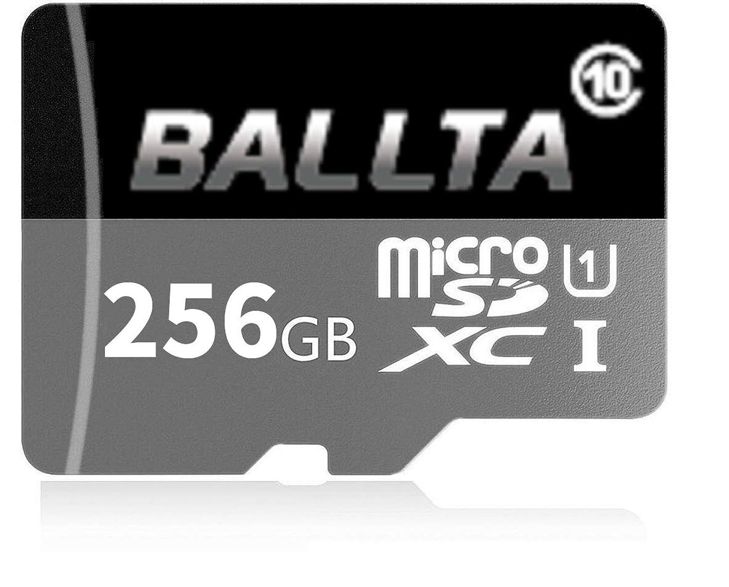 ハイランド緯度お風呂を持っているBallta 256 GBマイクロSD SDXCメモリカード高速クラス10 256 GB with Micro SDアダプタ、Designed for Androidスマートフォン、タブレット、および他の