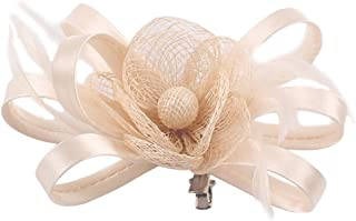 Fascigirl Flor Pluma del pelo Clip Decoraci/ón del Ornamento Accesorios Velo con los Granos