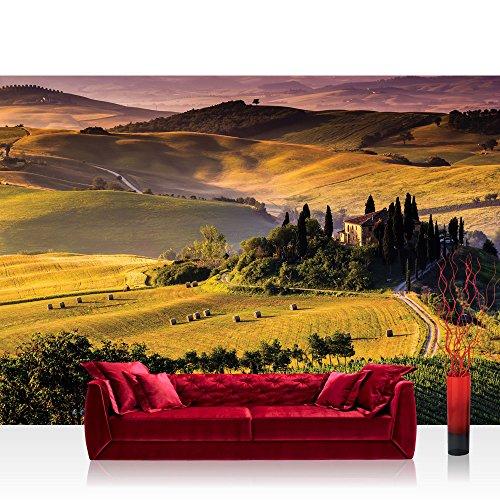 Fototapete 368x254 cm PREMIUM Wand Foto Tapete Wand Bild Papiertapete - Landschaft Tapete Feld Bäume Weg Abenddämmerung Panorama gelb - no. 452
