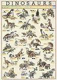 Educational - Bildung Dinosaurier - Dinosaurs