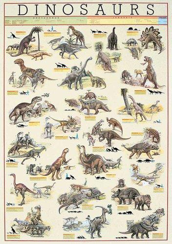 Educational - Bildung Dinosaurier - Dinosaurs Bildungsposter Plakat Druck - Version in Englisch - Grösse 68x98 cm