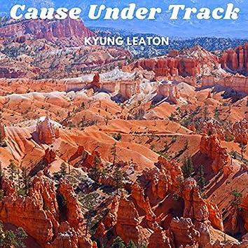 Cause Under Track