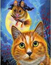 Full Drill Diamond Painting, Rhinestone Embroidery with Accessories and Tools Supply Arts Crafts Sewing Painted Cat Catching A Mouse 11.8 × 15.7in 1 Pack by AxiEr