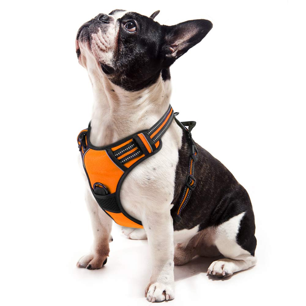 rabbitgoo Dog Harness,No-Pull Pet Harness with 2 Leash Clips,Adjustable Soft Padded Dog Vest,Reflective No-Choke Pet Oxford Vest with Easy Control Handle for Small Breed,Orange (S, Chest 15.7-27.6)