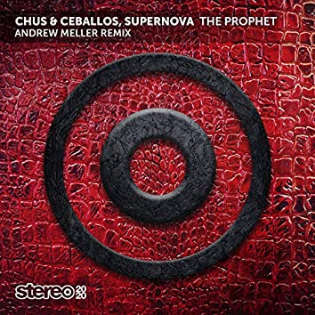 The Prophet (Andrew Meller Remix)