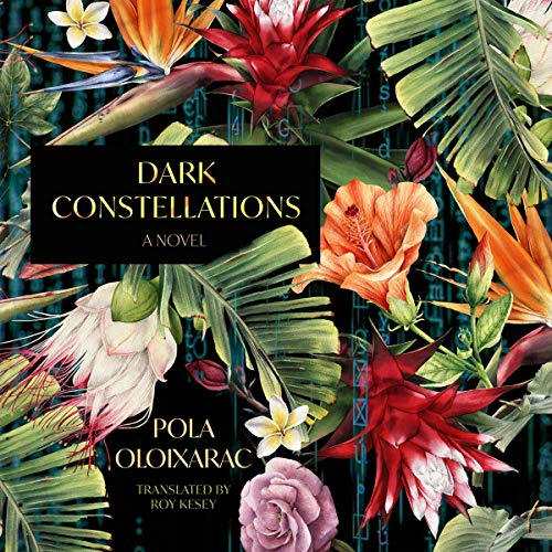 Dark Constellations audiobook cover art