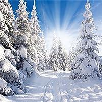 lfeey冬Scence背景写真スタジオの小道具