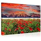Cuadro Imagen sobre Lienzo 70x50cm, Campo de Tulipanes Rojos al Atardecer, Montañas y Nubes, Fantasía - Decoración de Pared - Una Pieza