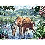 DIY 5D Diamante Pintura Pony bebiendo agua Diamond Painting Kits Completo Bordado Punto de Cruz Diamante Fabricación de Mosaicos Craft Decoración del Hogar 40x50cm(Sin marco)