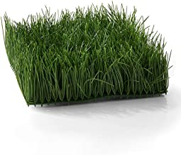 """Serene Spaces Living Set of 4 Artificial Green Wheatgrass Mat –Realistic Looking, Versatile Grassy Mat – Perfect for Centerpieces and Store Displays –Large, 10"""" x 10"""" x 4"""""""