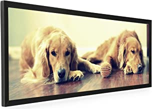 Displays2go 40 x 13.5 Panoramic Photo Frame for Wall Mount Use, 1-inch Profile, Aluminum (Black)