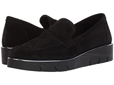 The FLEXX Harrow (Black Suede) Women